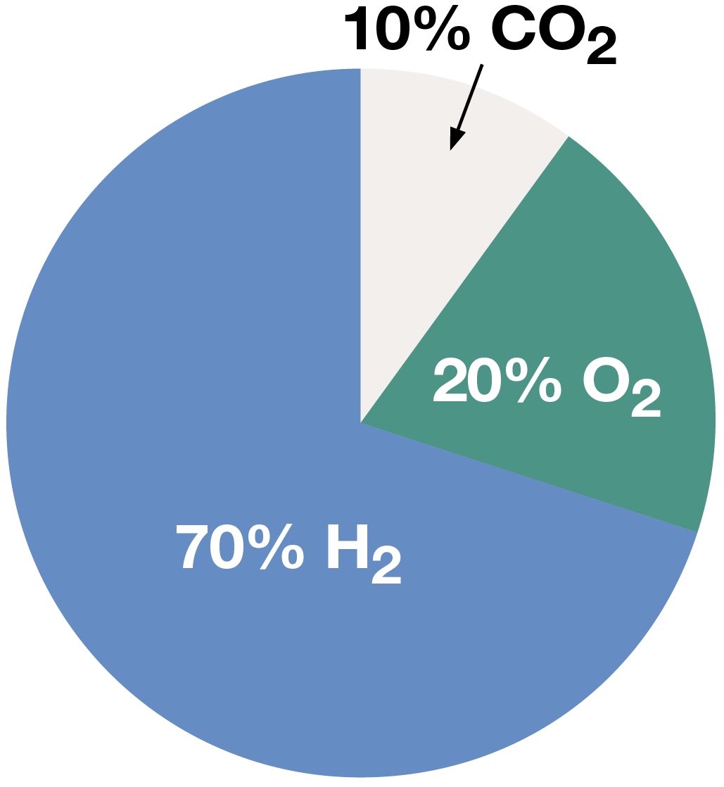 Oxygen, Hydrogen and Carbon Dioxide Mixture Pie Chart